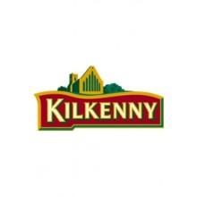 Kilkenny 4,3° - Fut 30L
