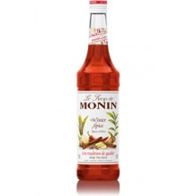 Monin Bouteille Sirop Epices Hiver